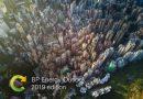 BP Enerji Görünümü 2019 raporu: Küresel enerji talebi 2040'a kadar üçte bir oranında artacak